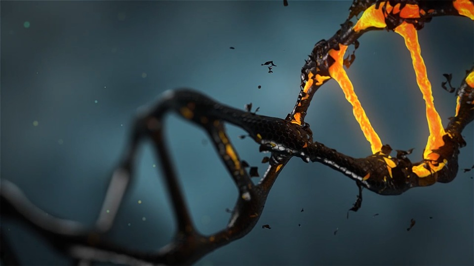 dna reacts to medication